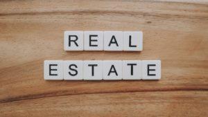 Real Estate Developer