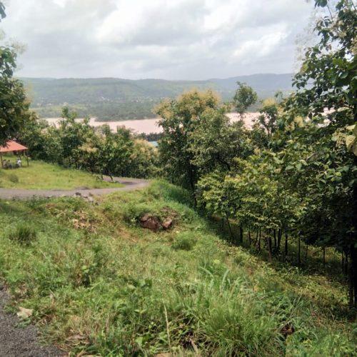 Developed farming land near Pune