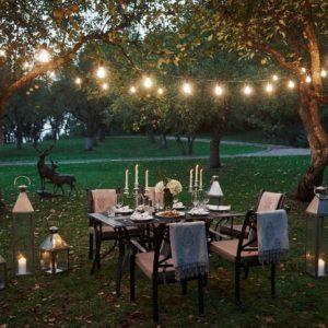 Osian Lifelands - Party Lawn